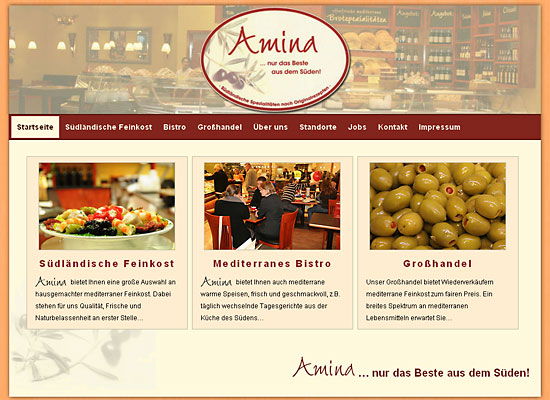 webdesign amina