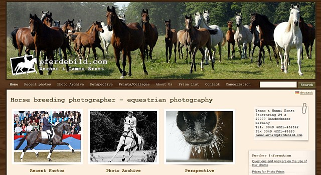 webdesign pferdebild com