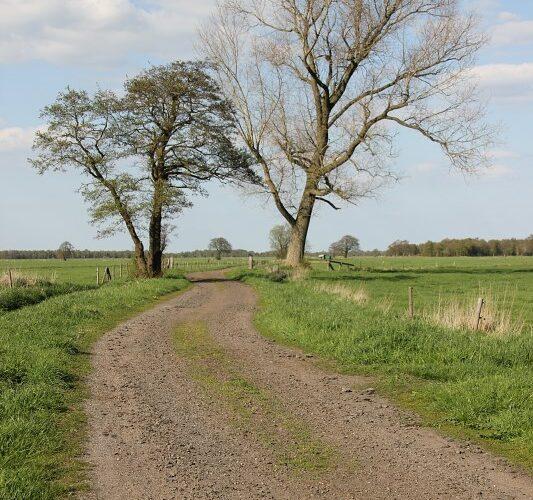 bornhorster see oldenburg 002