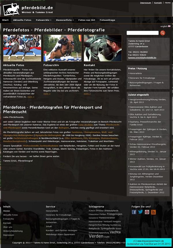 webdesign pferdbild 2013