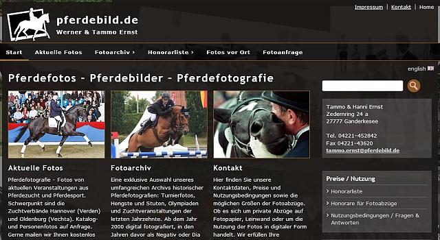 webdesign pferdebild bremen
