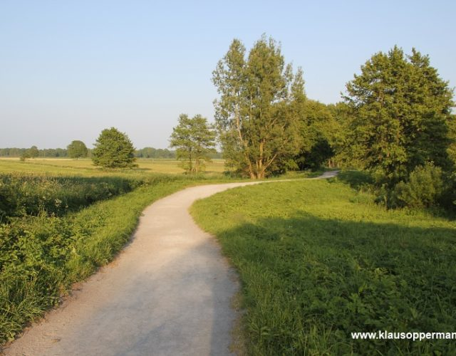 bornhorster see oldenburg 020