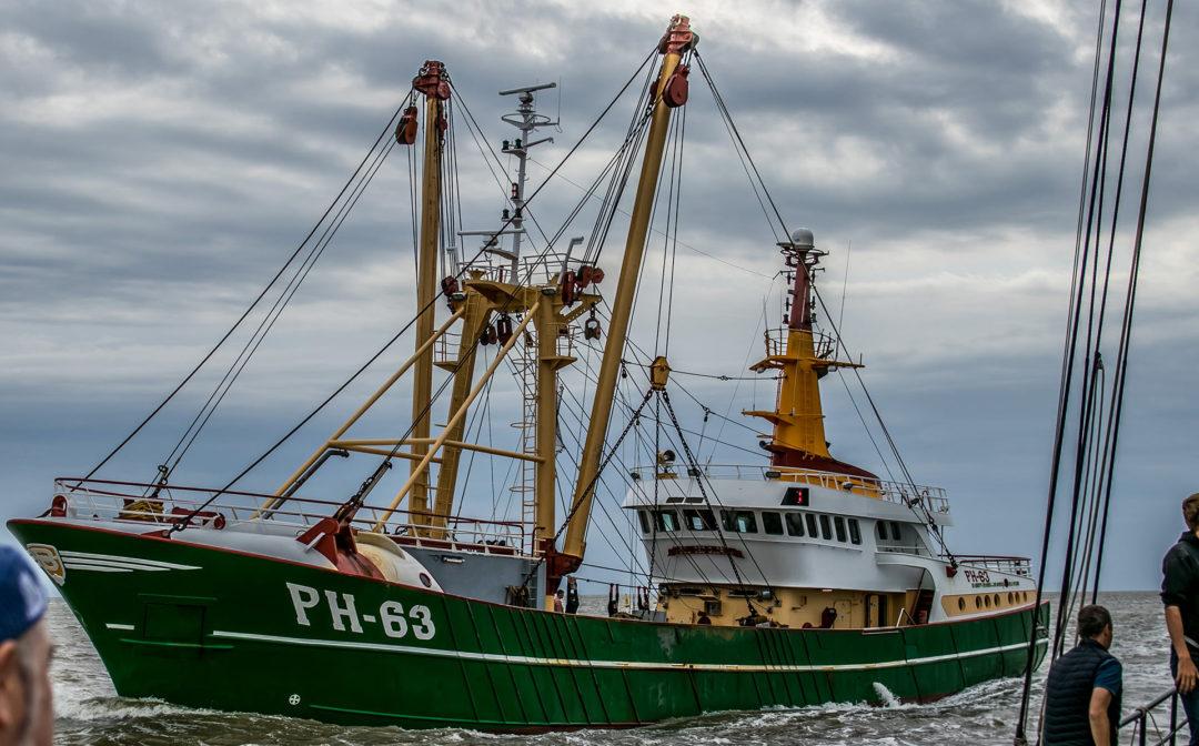 Poseidon 04 Segeln auf dem IJsselmeer