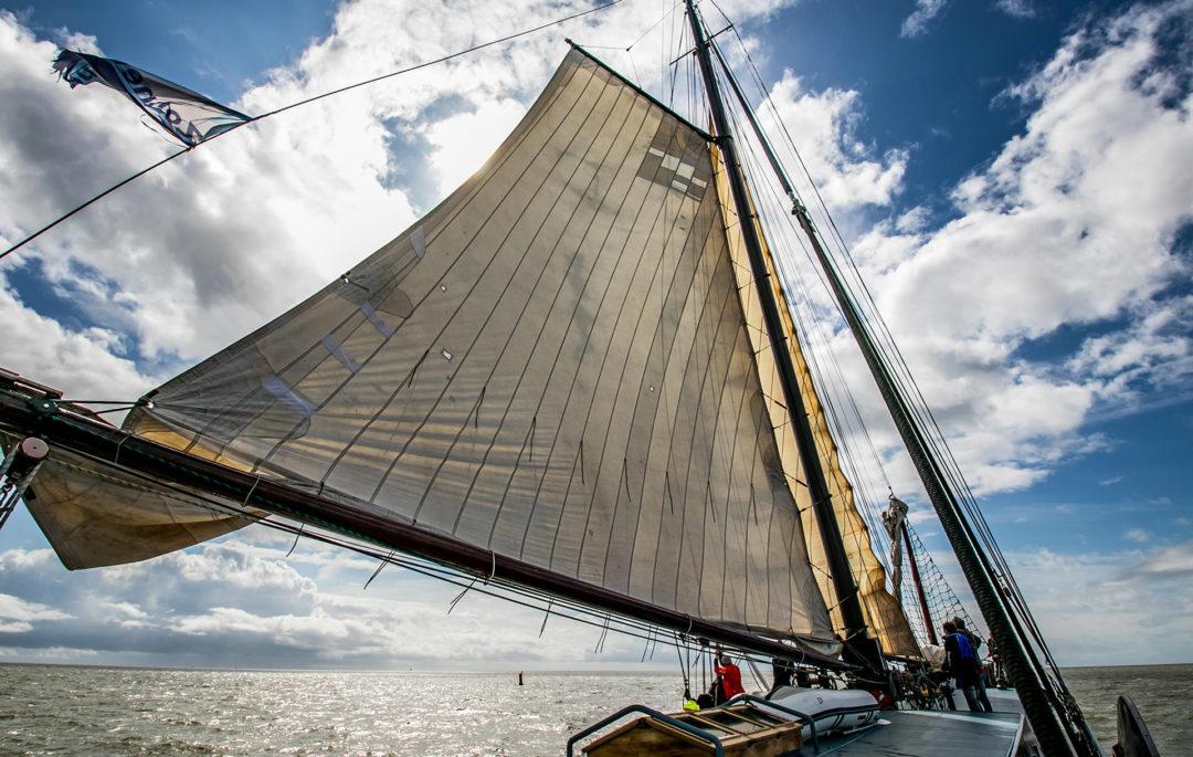Poseidon 21 Segeln auf dem IJsselmeer