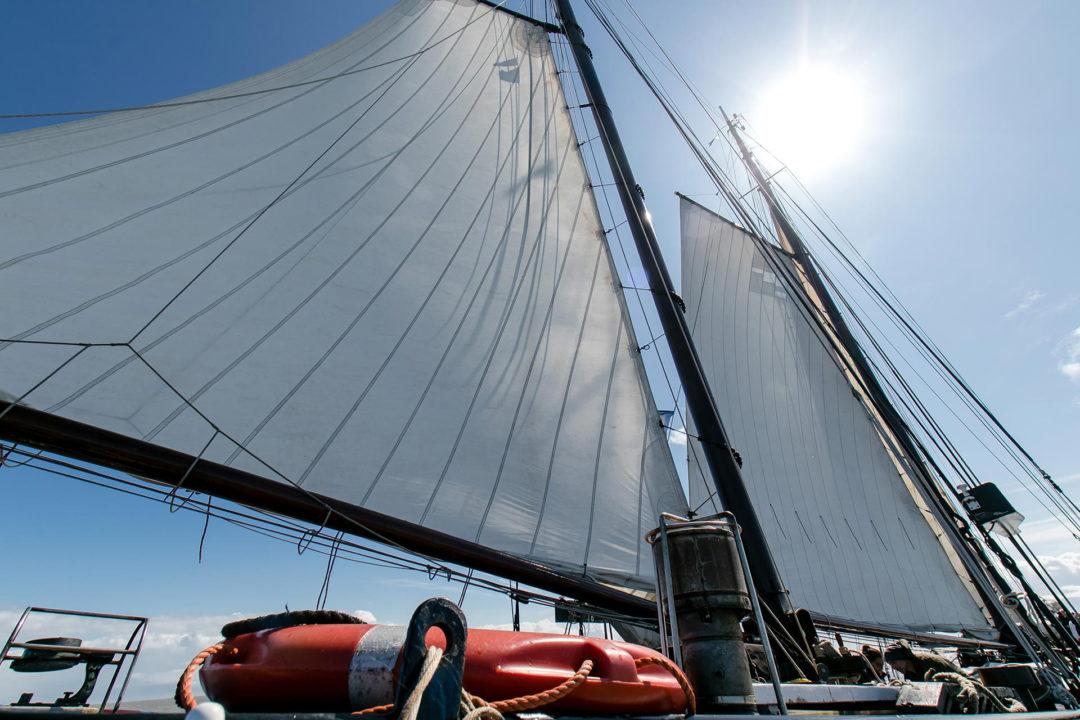 Poseidon 27 Segeln auf dem IJsselmeer
