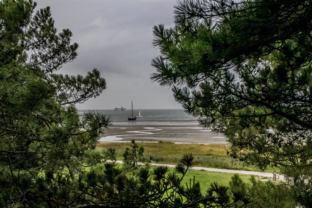 Terschelling 03 Segeln auf dem IJsselmeer