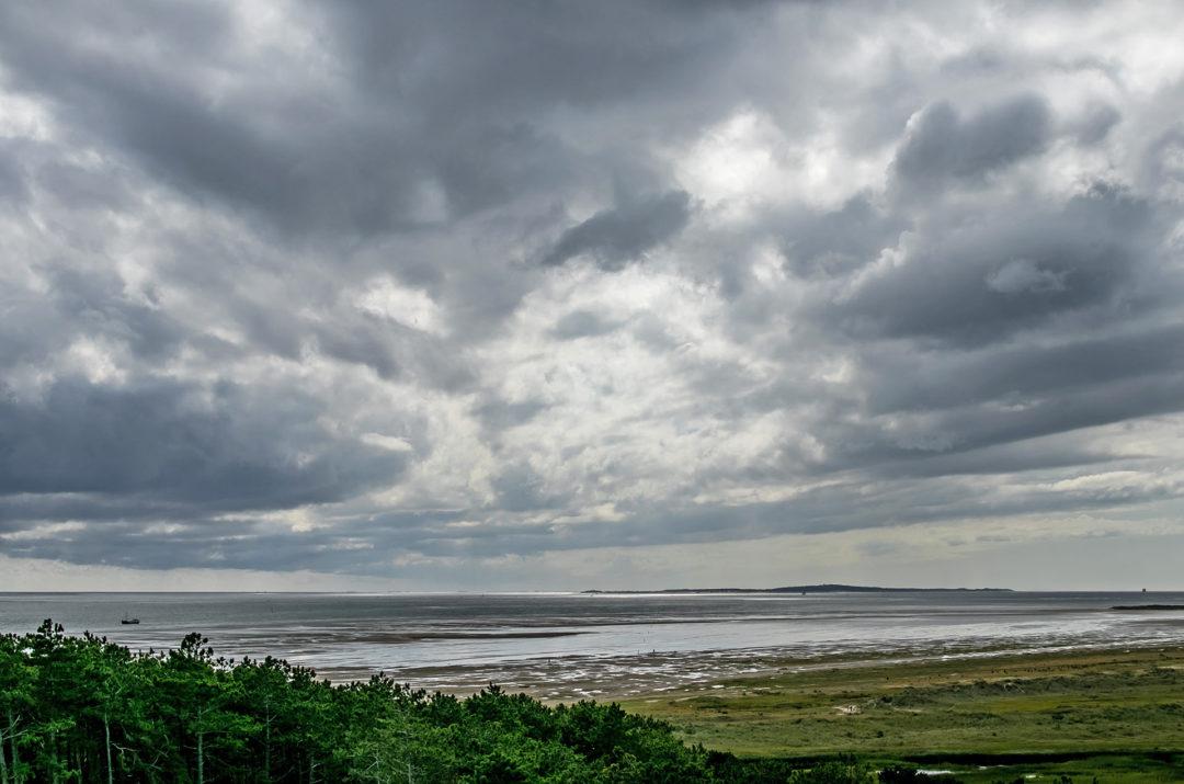 Terschelling 14 Segeln auf dem IJsselmeer