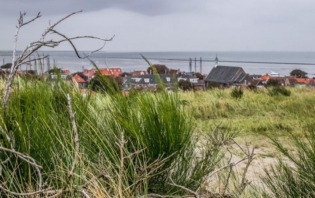 Terschelling 17 Segeln auf dem IJsselmeer