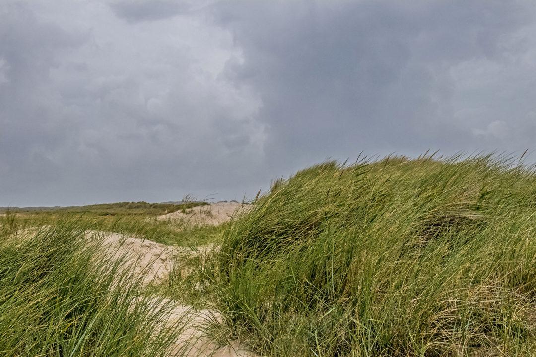 Terschelling 19 Segeln auf dem IJsselmeer
