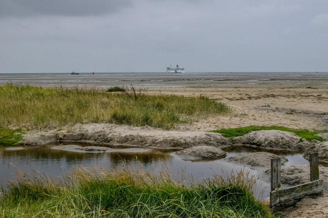 Terschelling 20 Segeln auf dem IJsselmeer