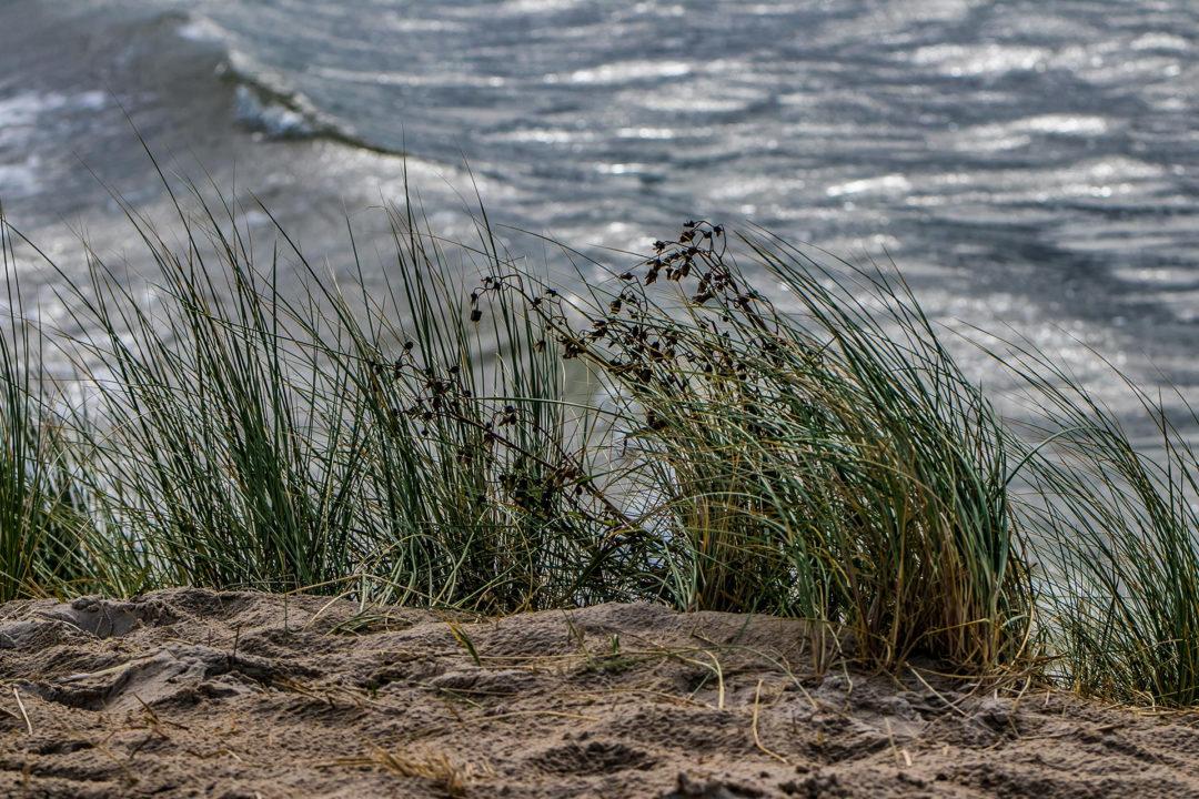 Vlieland 5 Segeln auf dem IJsselmeer