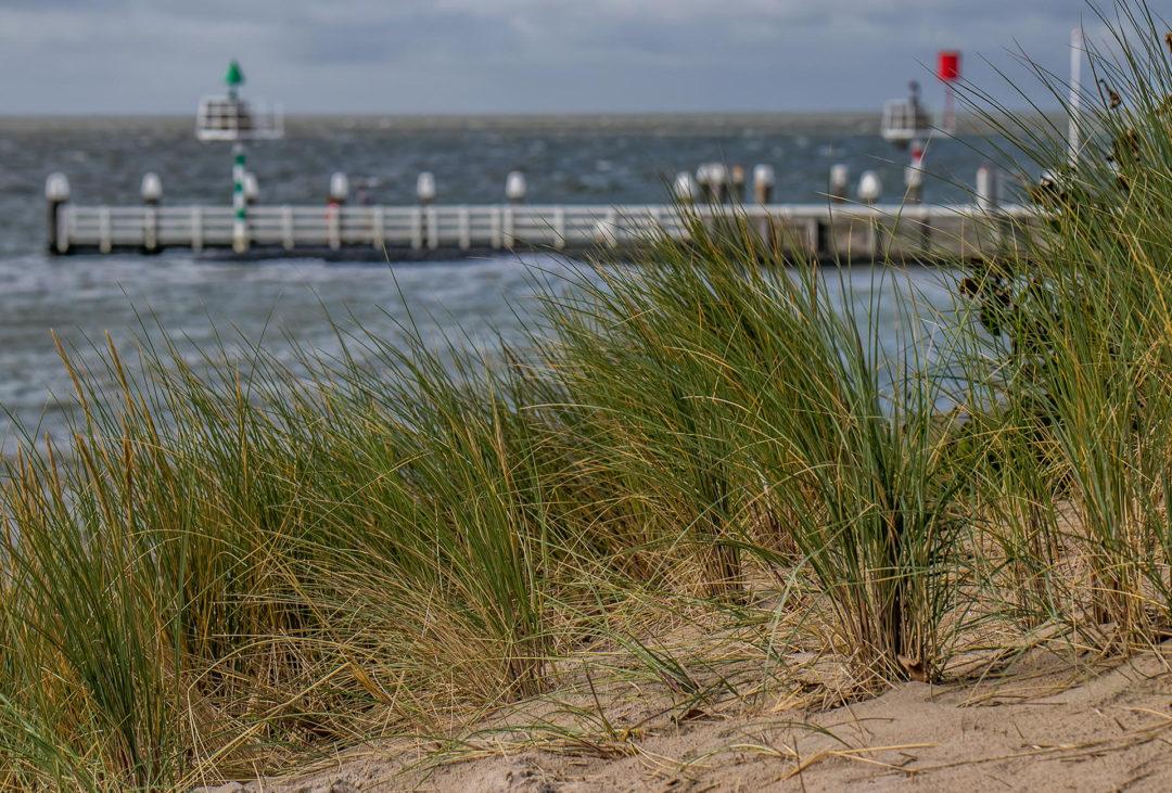 Vlieland 6 Segeln auf dem IJsselmeer